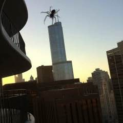 Giant Spider Eats Trump Tower.  Or Not.