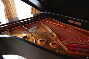 Polish Consulate-1911 Steinway Model A