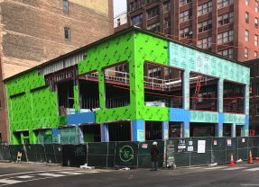 Roots Has Sprouted, Now Greening the South Loop